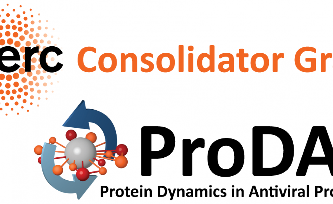 Protein Dynamics in Antiviral Processes: ERC Consolidator Grant